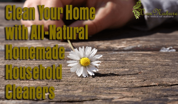 All-Natural Homemade Household Cleaners