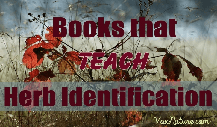 4 Books that Teach Herb Identification