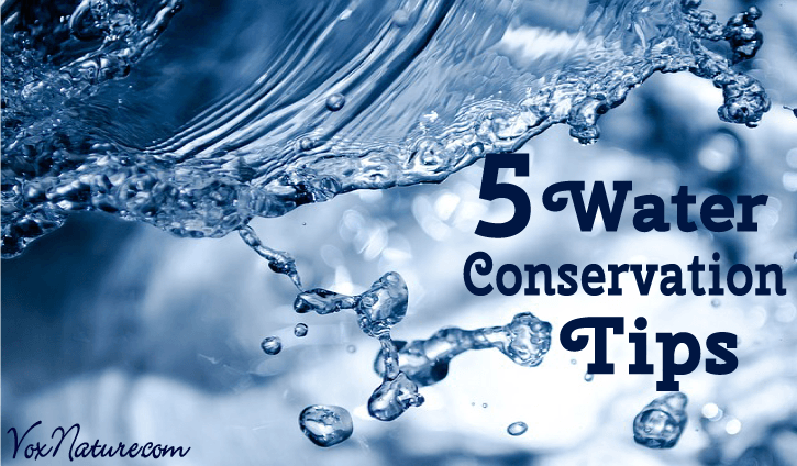 5 Water Conservation Tips You Should Already Know