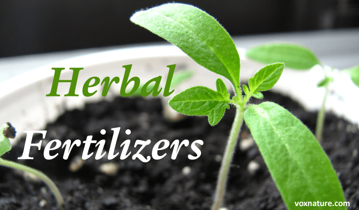 Herbal Fertilizers and You