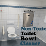 DIY Non-Toxic Toilet Bowl Cleaner
