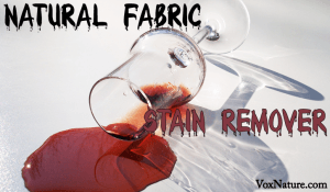 All Natural DIY Fabric Stain Remover