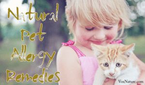 Pet Allergy Remedies | Effective & Natural