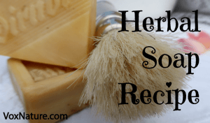 Make Your Own Herbal Soap from Scratch
