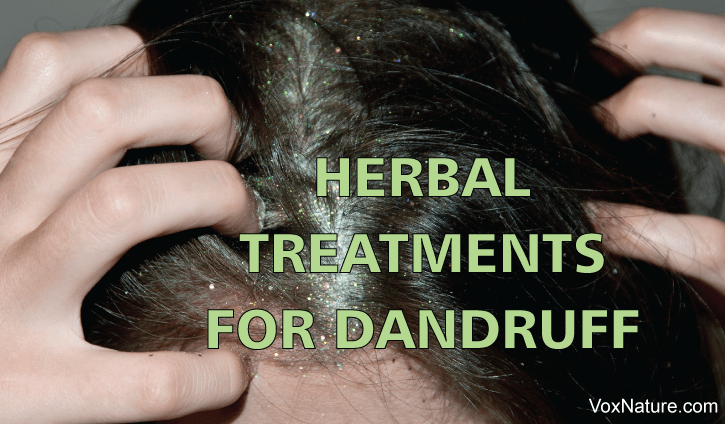 7 Effective Herbal Remedies for Dandruff