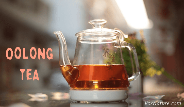 7 Incredible Health Benefits of Oolong Tea