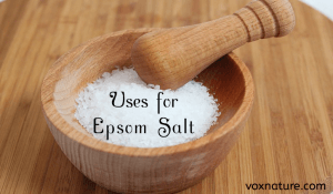 9 Fantastic Uses for Epsom Salt in the Garden