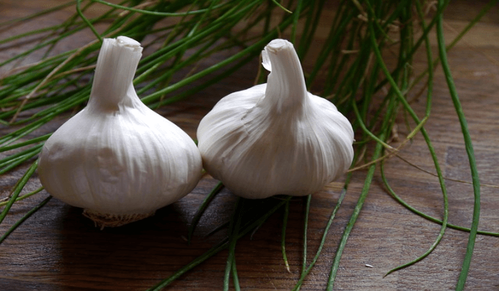 The Many Benefits of Garlic (Allium Sativum)