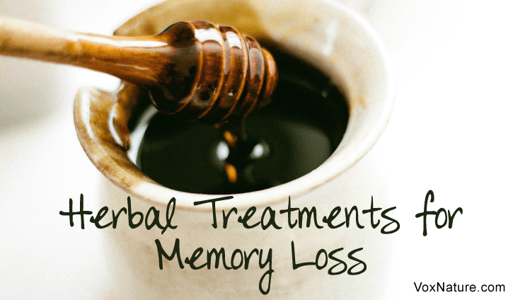 8 Effective Herbal Treatments for Memory Loss