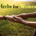Top 5 Herbs for Women's Sexual Health
