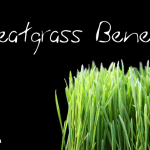 7 Surprising Health Benefits of Wheatgrass