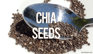Health Benefits of Chia Seeds (Salvia hispanica)