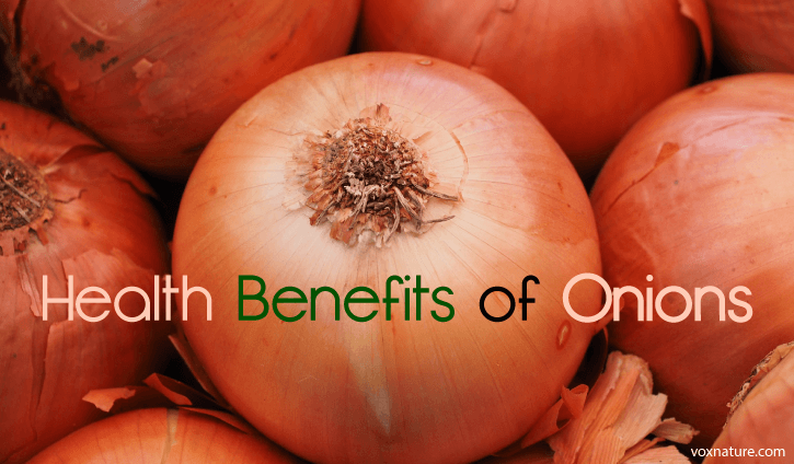 Health Benefits of Onions (Allium cepa)
