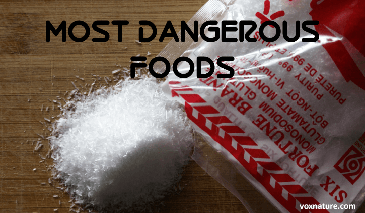 Top 7 Most Dangerous Foods and Why You Should Avoid Them