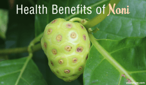 Health Benefits of Noni (Morinda citrifolia)