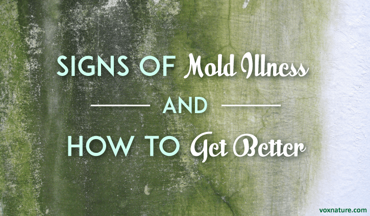 Mold Could Be The Reason You Feel Sick Signs Of Illness And How To Get Better
