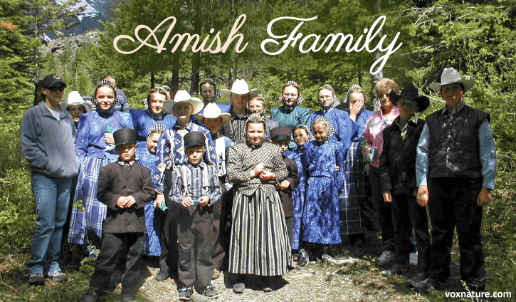 Why Cancer Rates Among the Amish are Significantly Lower than Other Populations
