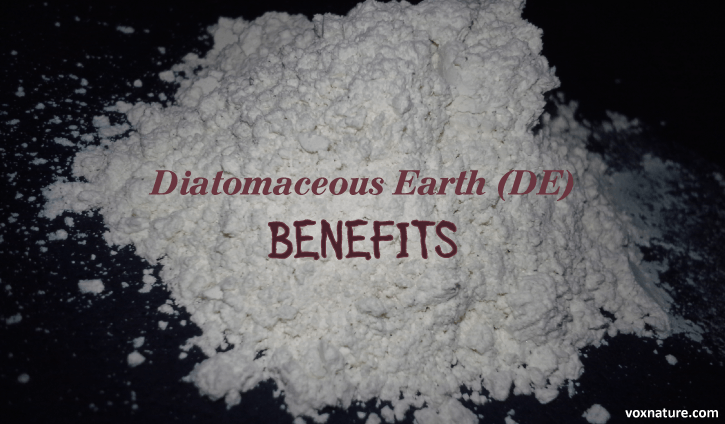 Health Benefits and Uses of Diatomaceous Earth (DE)