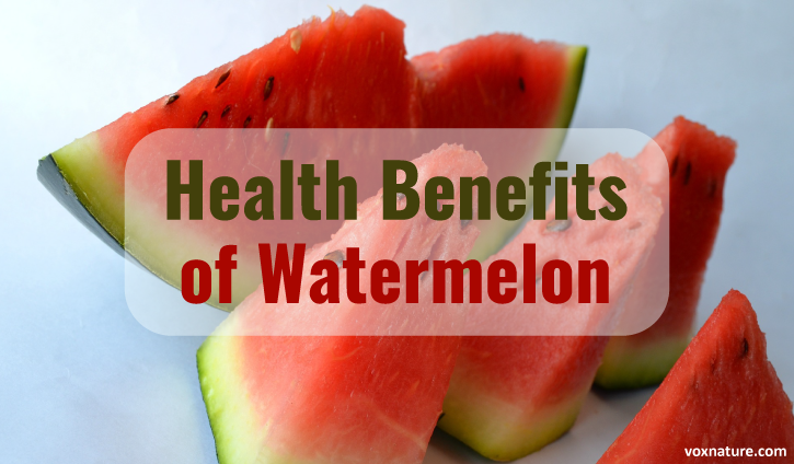 Health Benefits of Watermelon (Citrullus lanatus)