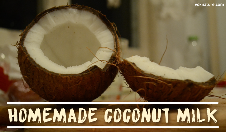 Health Benefits of Coconut Milk (plus How to Make It)