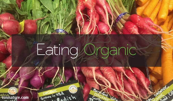 Why You Should Always Choose Organic Foods
