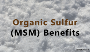 7 Reasons Organic Sulfur (MSM) is Absolutely Vital for Your Health