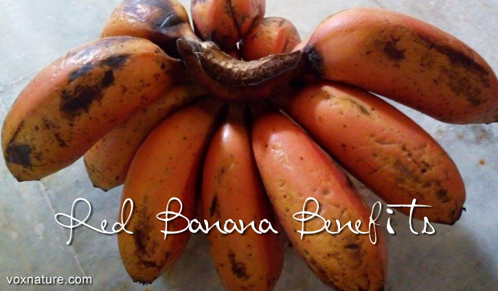 9 Ways Red Banana Can Benefit Your Health