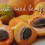10 Health Benefits of Apricot Seeds