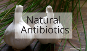 15 Natural Antibiotics Your Doctor Will Never Prescribe