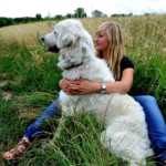 7 Natural Methods to Strengthen Your Dog's Immune System