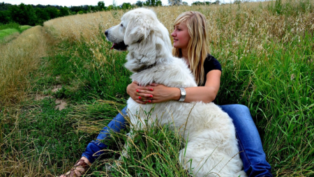 Natural Methods to Strengthen Your Dog's Immune System