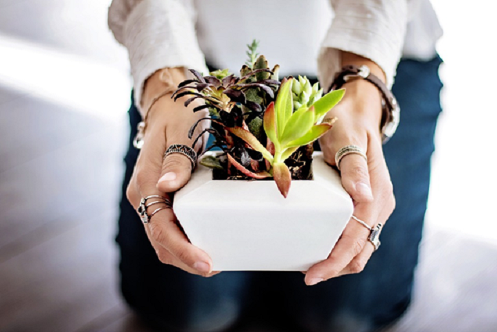 5 Easy Ways to Green & Clean Your Home