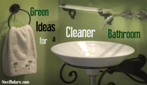 Going Green: Remaking the Bathroom