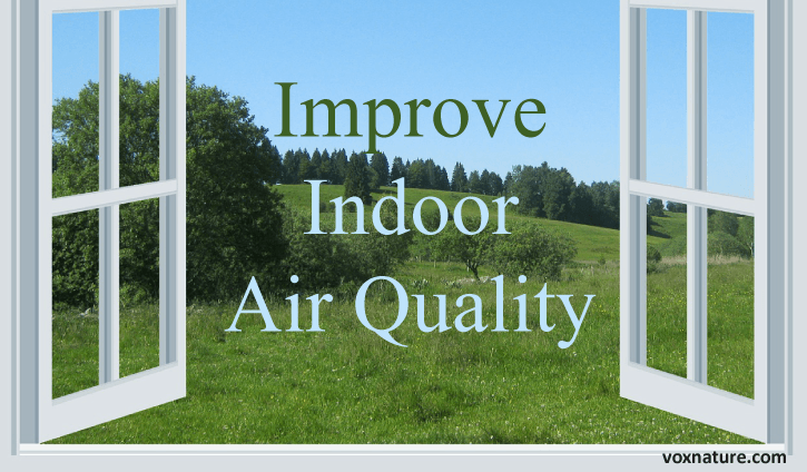 Air quality in the United States and UK are not much better than countries like China and  How to Raise Your Indoor Air Quality
