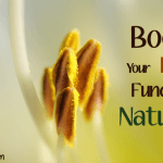 How You Can Boost Your Liver Function Naturally