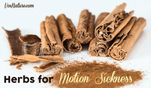 Commonly Used Herbs for Motion Sickness