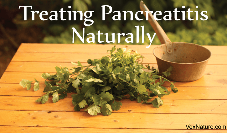 Pancreatitis is an extremely painful condition Protecting Your Pancreas: Natural Remedies for Pancreatitis