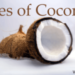 Remarkable Ways of Using Coconut Oil