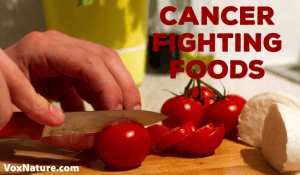 Top 10 Cancer Fighting Foods To Add to Your Diet