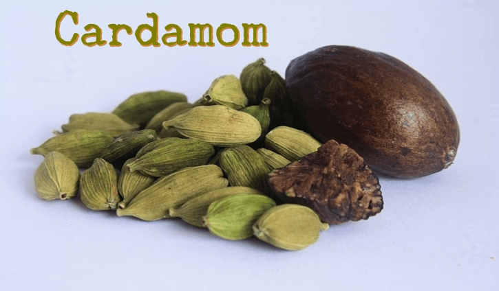The tiny seed pods have a triangle cross Medicinal Uses of Cardamom