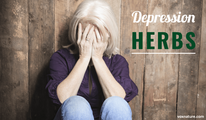 Depression can be a very frustrating condition 10 Best Herbs for Treating Depression