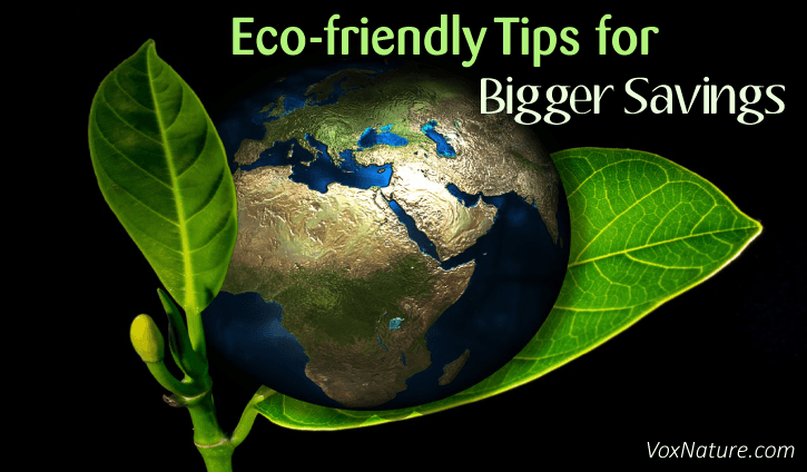 friendly lifestyle either costs time or money 10 Eco-friendly Tips for Bigger Savings