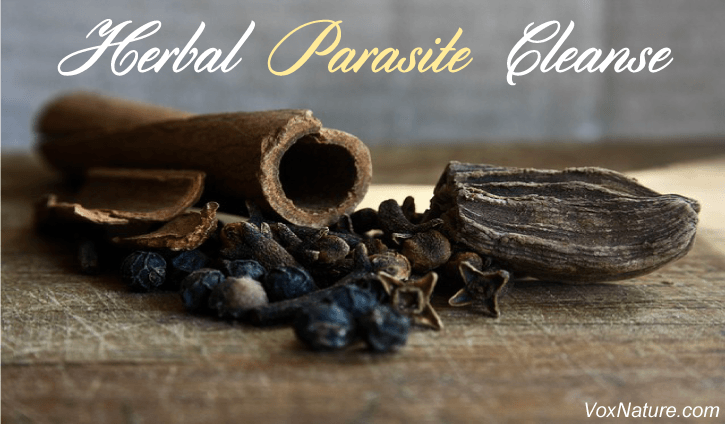 Herbs and Alternative Remedies to Detoxify the Body of Parasites Herbs and Alternative Remedies to Detoxify the Body of Parasites