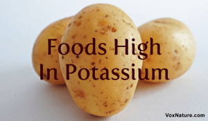 10 Foods that Are High In Potassium