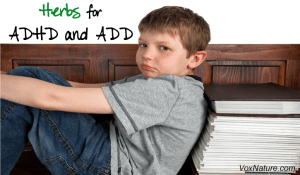 Herbal Treatments for ADHD and ADD