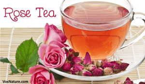 Remarkable Health Benefits of Rose Tea