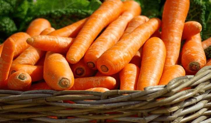 Carrot is a popular and widely used root vegetable Health Benefits of Carrots  Health Benefits of Carrots (Daucus carota subsp. Sativus)