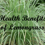 8 Ways Lemongrass (Cymbopogon) Benefits Your Health