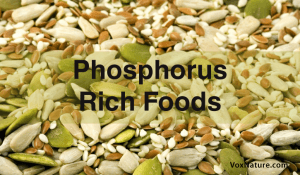 Benefits of Phosphorus + Top 10 Rich Foods