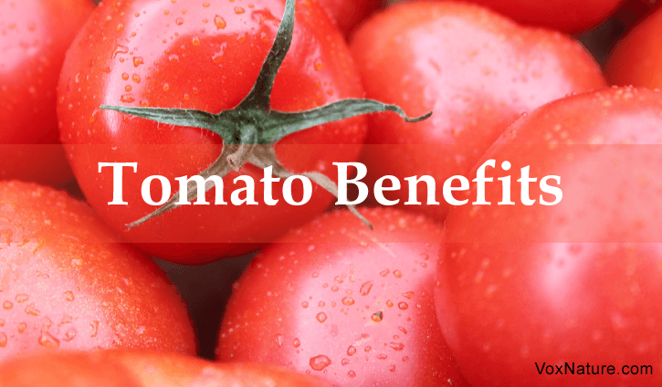Reasons You Should Add More Tomatoes to Your Diet 9 Reasons You Should Add More Tomatoes to Your Diet